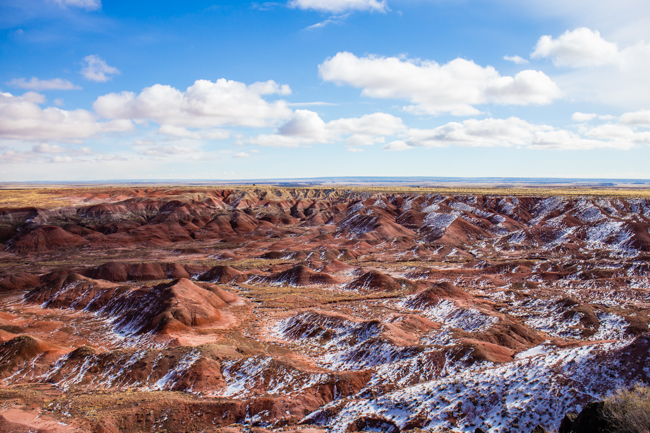 a snowy painted desert