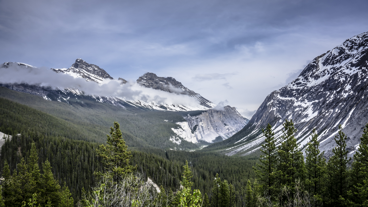 Canadian Rockies National Park
