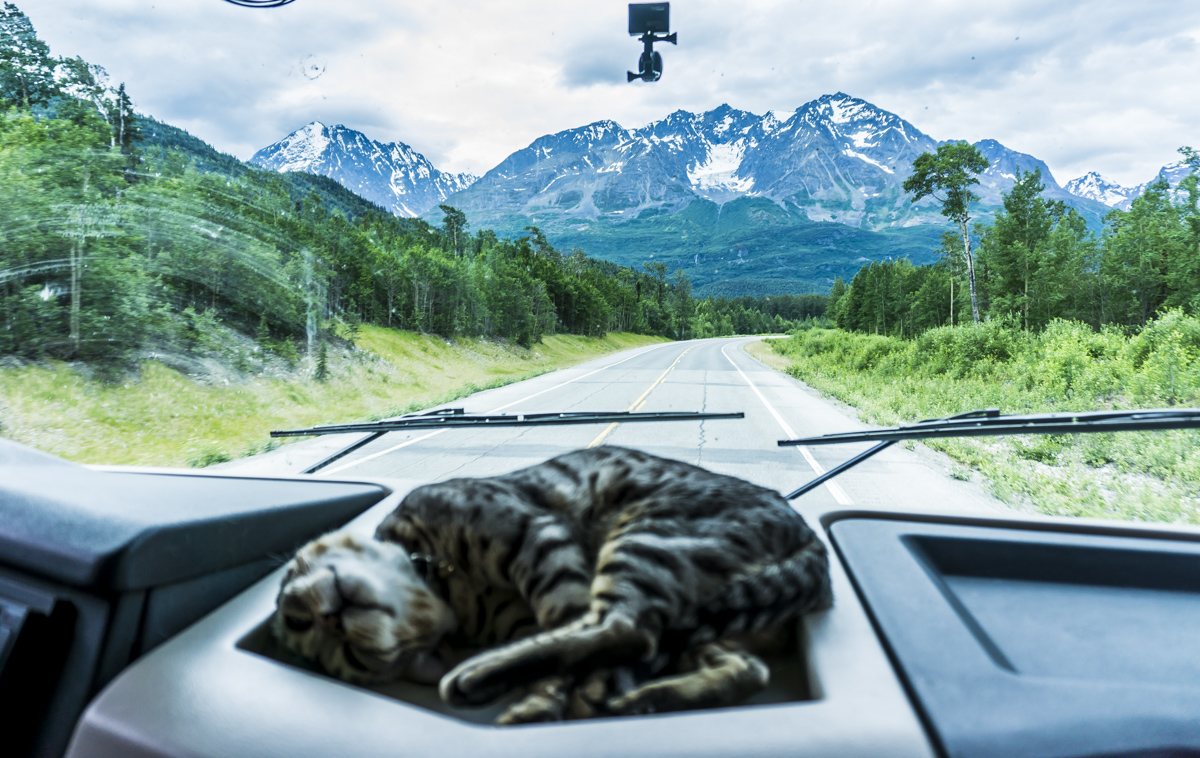 Richardson highway road trip