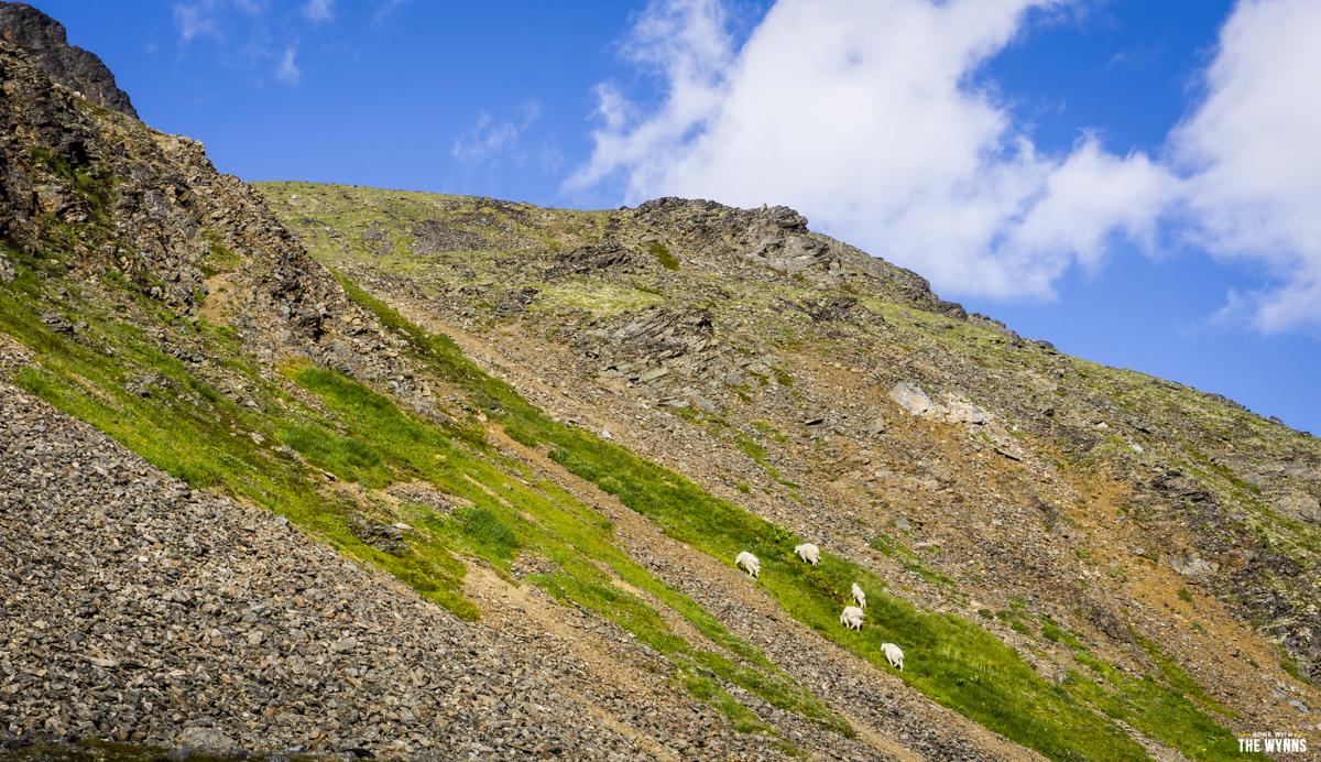 best alaska hikes