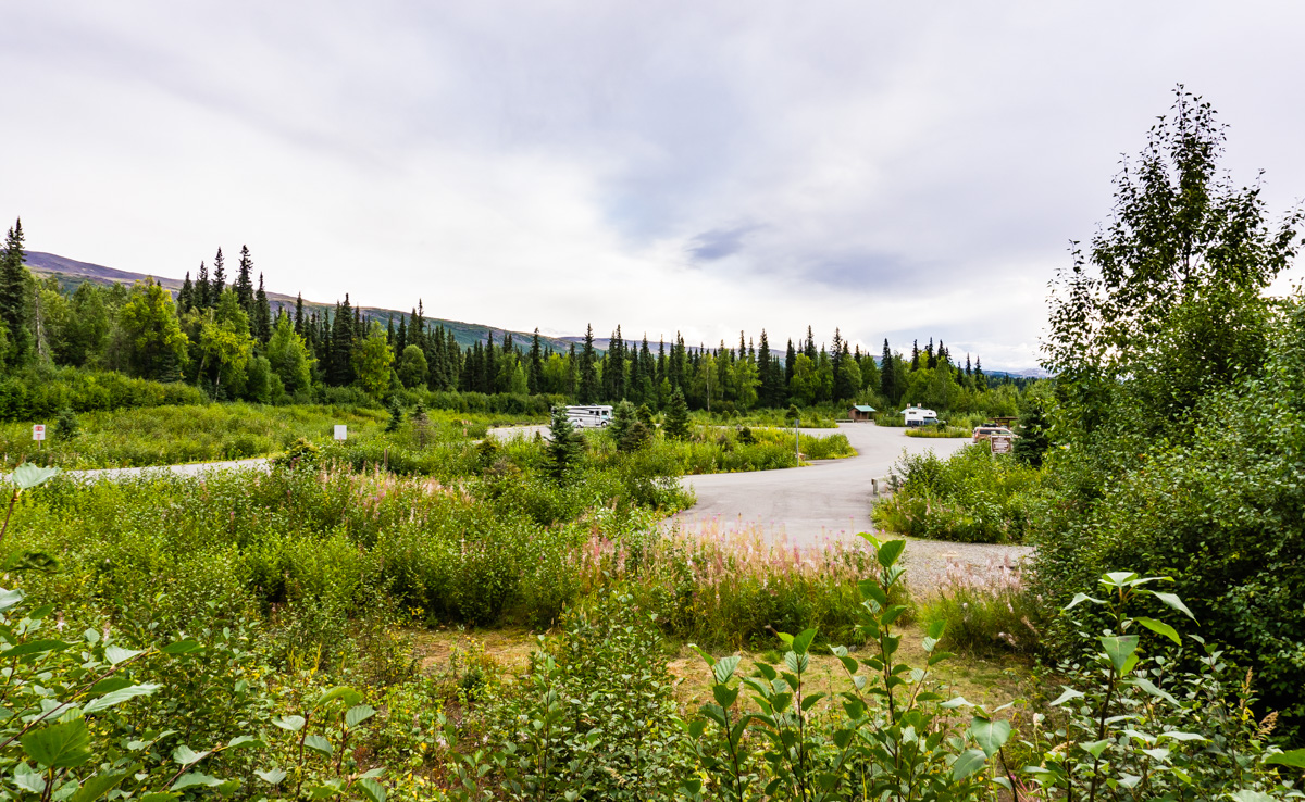 Denali State Park RV Camping