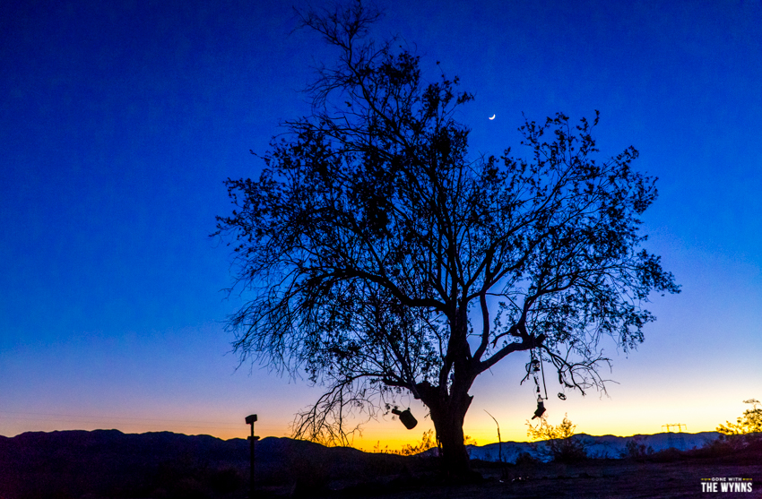 free camping joshua tree
