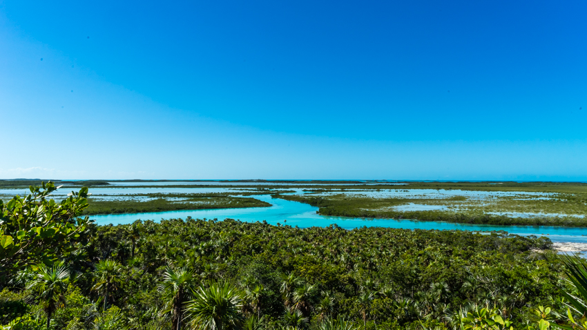 exploring exuma land and sea park