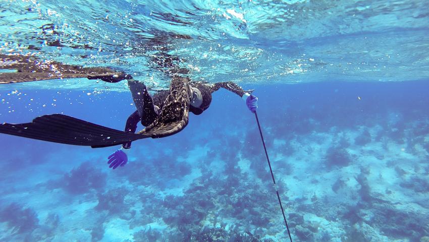 diving and sailing the jumento islands bahamas