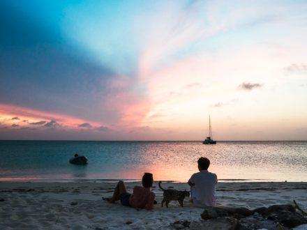 wild sailing in the bahamas
