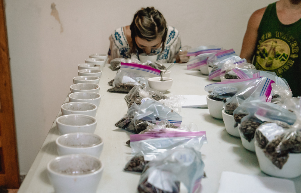 cupping coffee with graciano