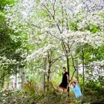 Nacogdoches Azalea Garden