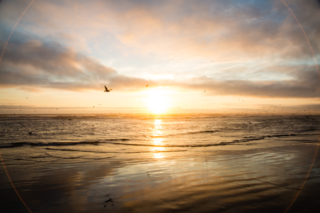 sunset ocean shores