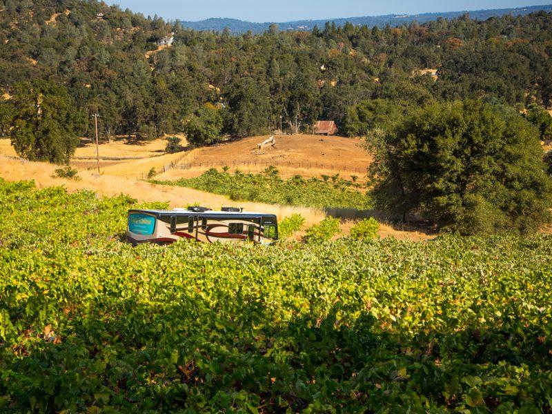 camping at winery