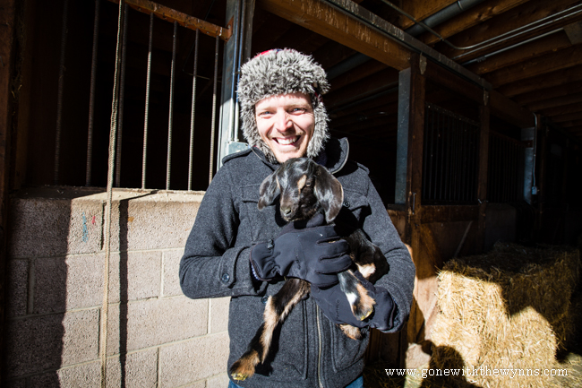 jumpin good goat farm