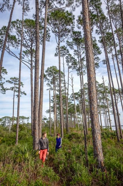 coastal pine trail florida