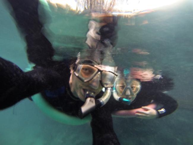 snorkeling wynns