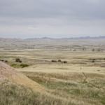 prarie lands