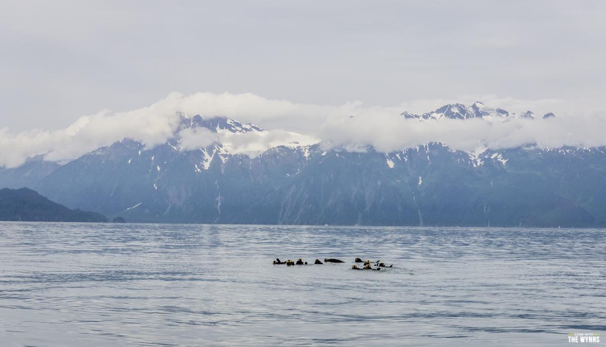 Fishing Valdez Alaska