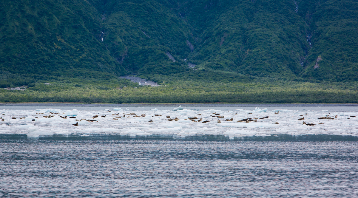 sightseeing alaska by water