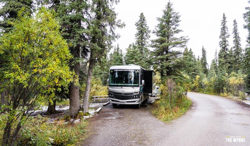 camping denali national park