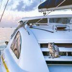 sailboat shakedown cruise