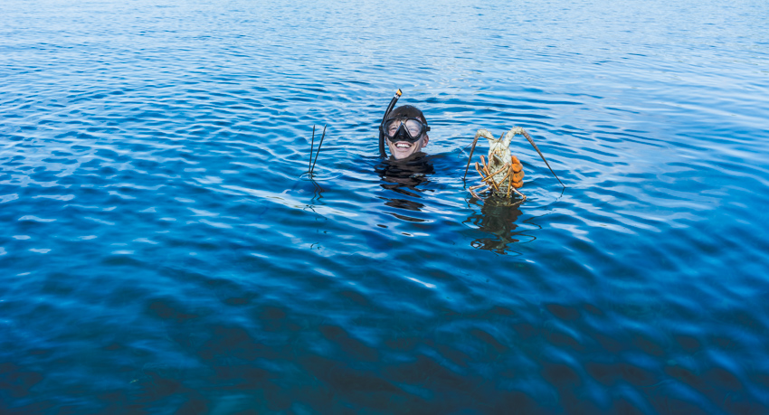 spearfishing bahamas