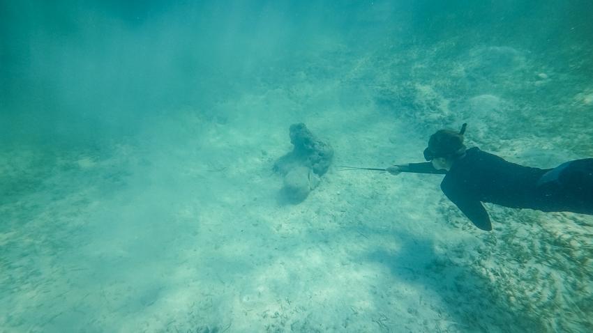 sailing bahamas