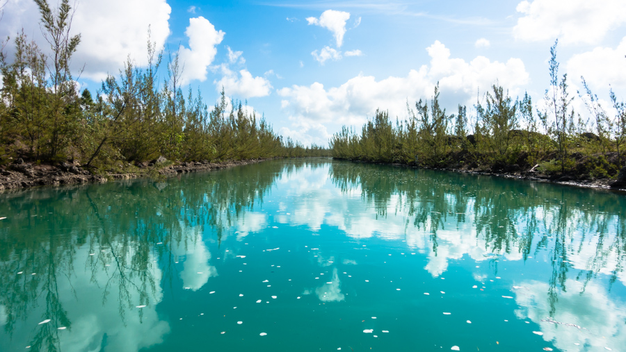 provisioning adventures bahamas