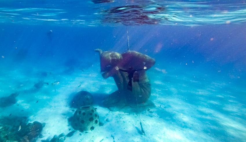 ocean atlas nassau