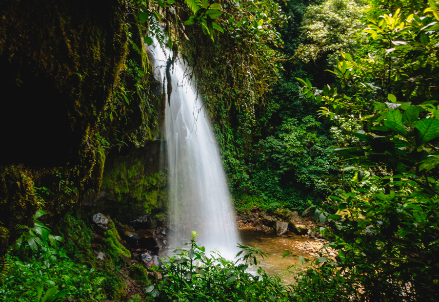 hiking the lost waterfalls