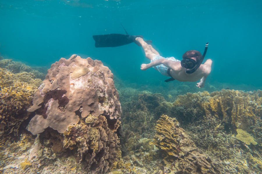 jason inspecting the coral in san blas