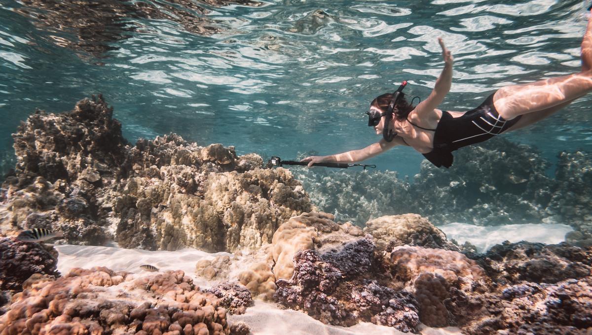 Nikki Wynn snorkeling coral garden in moorea french Polynesia