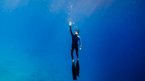 jason wynn freediving adventures in the south pacific