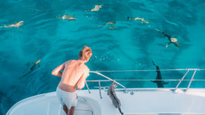 surrounded by sharks on our sailboat