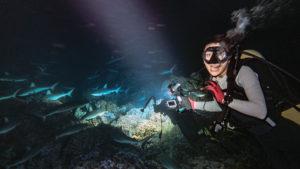 nikki wynn swimming with sharks in fakarava french polynesia