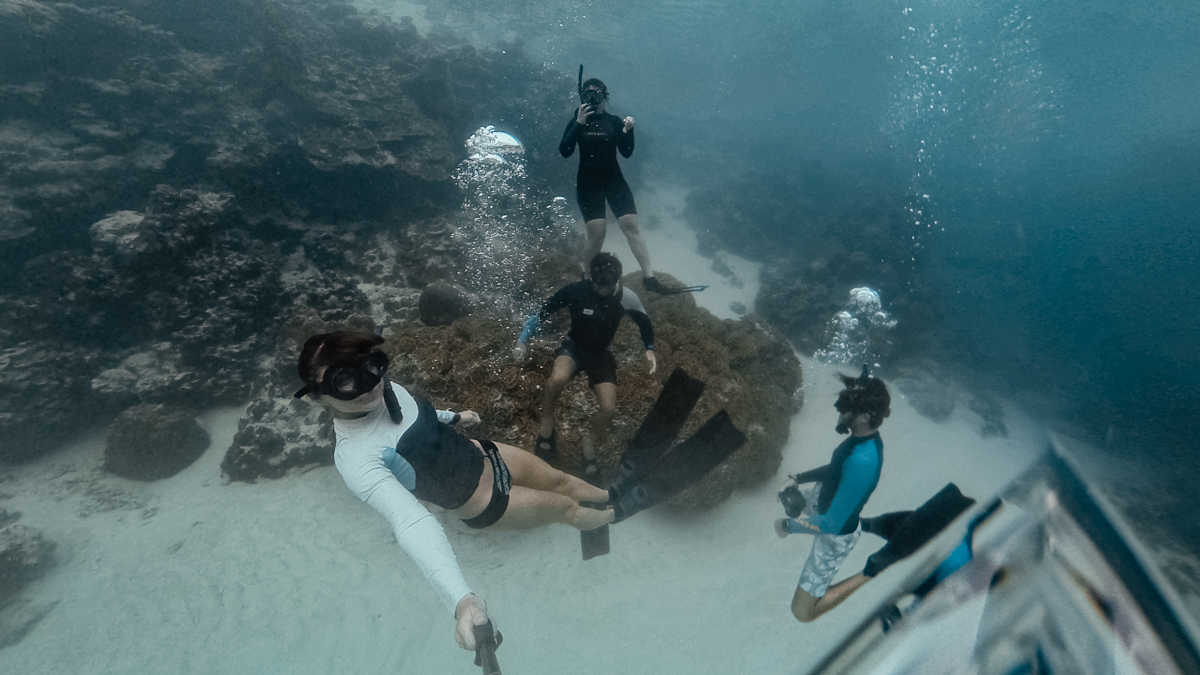 jason and nikki wynn snorkle and freedive rarotonga with josh