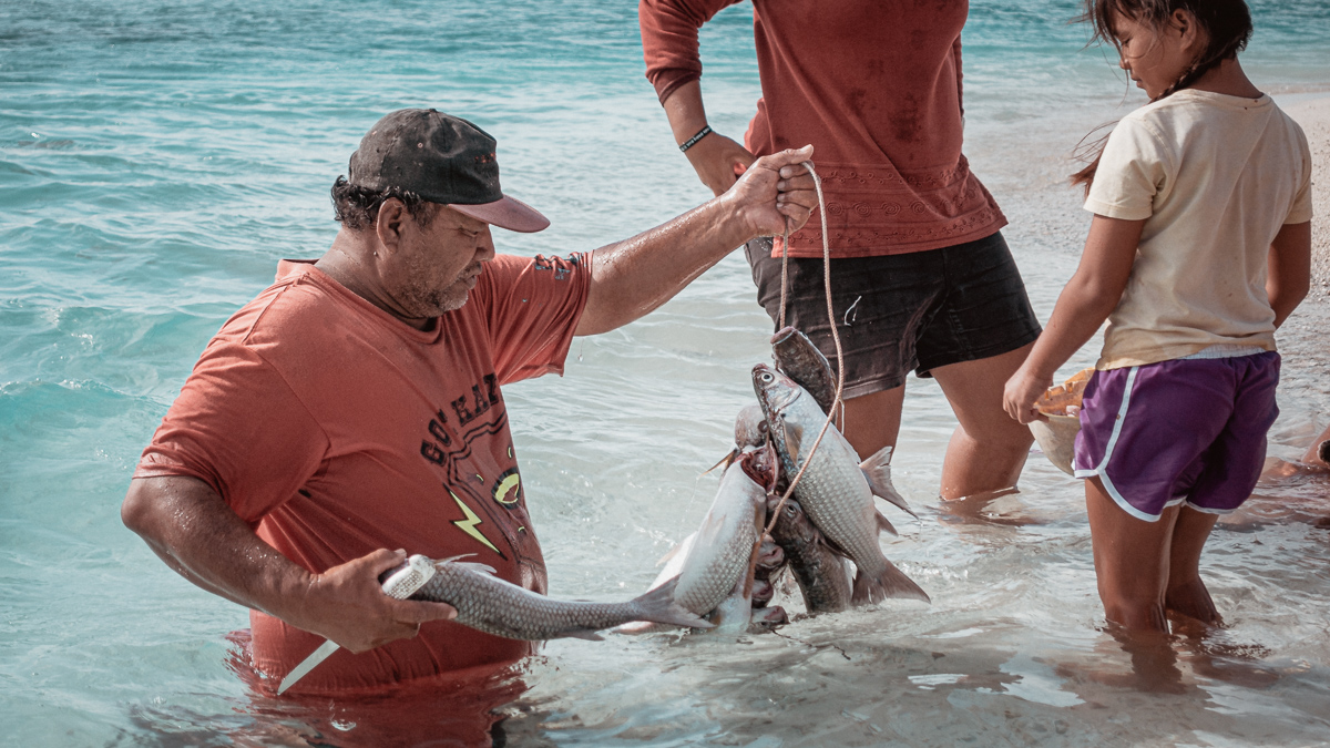 bob cleaning fish on palmerston island, cook islands