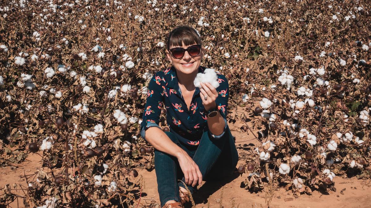 nikki wynn holding up west texas cotton